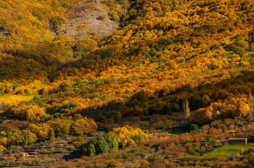 paisaje de otoño garganta de los infiernos