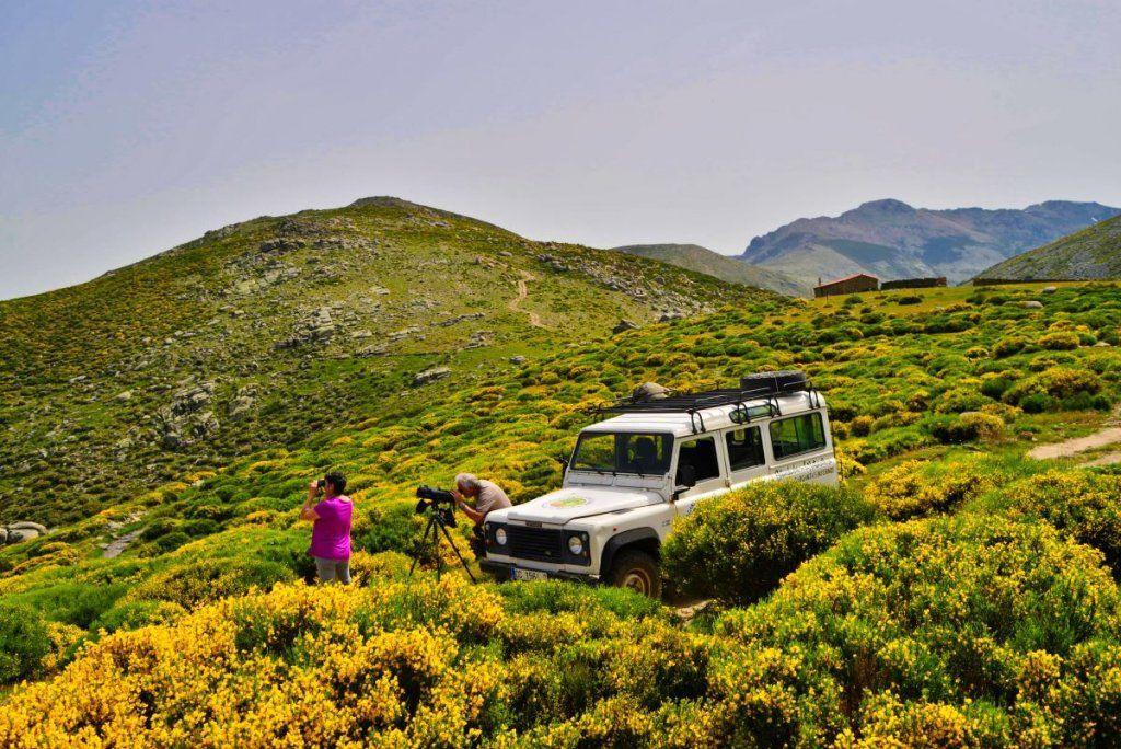 excursiones VIP valle del jerte