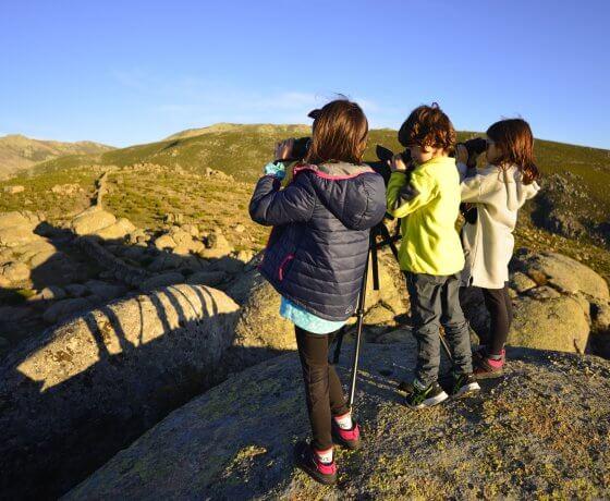 observación de aves birdwatching en el valle del jerte y garganta de los infiernos
